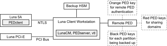Local Application-Partition Backup and Restore Using the Backup HSM